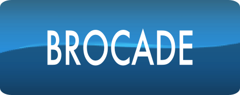 Brocade compatible optical transceivers